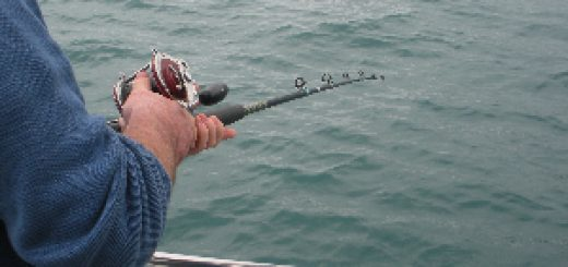 Fishing in West Cork off Courtmacsherry