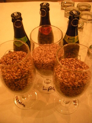 Malt samples from Porterhouse Brewing Company, Dublin