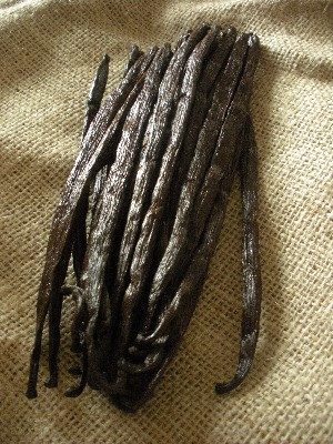 A handful of vanilla pods