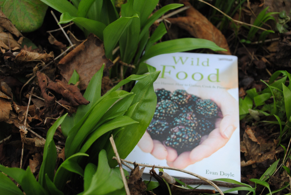 Wild Food by Biddy White Lennon & Evan Doyle: