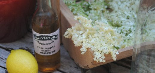 Bibliocook.com - making Elderflower Champagne