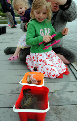 Bibliocook.com - Crabbing in St Dogmaels, Wales