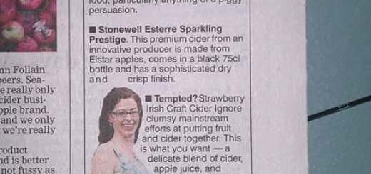 Bibliocook.com - Irish craft cider recommendations in the Irish Examiner