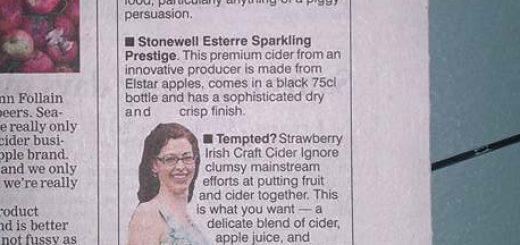 Bibliocook.com - Irish craft cider recommendations in the Irish Examiner