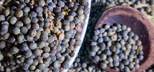 Bibliocook.com - puy lentils