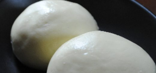 homemade mozzarella - finished cheese
