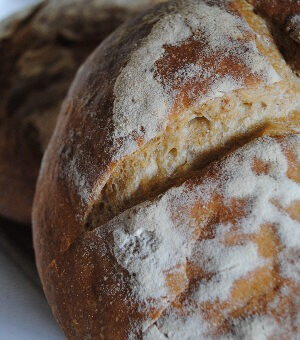 Homemade sourdough loaves