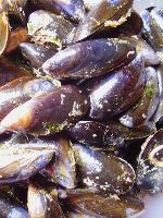 Bibliocook.com - mussels