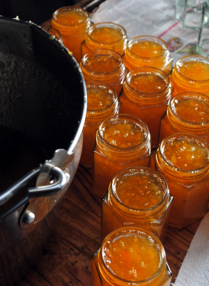 Pots of pleasure - Seville orange marmalade