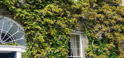 Bibliocook.com - Ballymaloe House May 2017