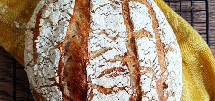 Bibliocook.com - sourdough bread